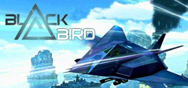 black-bird.jpg